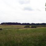 2012_07_biesenthal rundwanderung_01