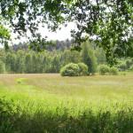 2012_07_biesenthal rundwanderung_04