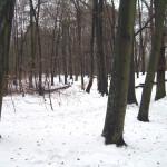 2011-02_frohnau_03