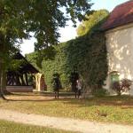 2011-12_lychen-himmelpfort_06
