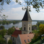2010-04_adonisroeschen_10