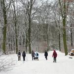 2010-12_griebnitzsee-babelsberg_18