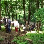 2008-05_werder-rundweg_10