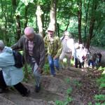 2008-05_werder-rundweg_11