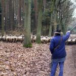 2006-04_belzig-wiesenburg_05