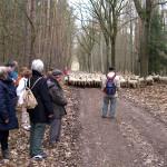 2006-04_belzig-wiesenburg_06
