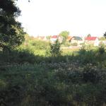2014-09_fangschleuse-woltersdorf_01