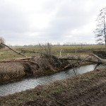 2015-04 luette-golzow_04