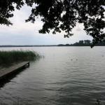 1507_wensickendorf-wandlitzsee_07