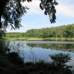 1507_gramzow-warnitz_17