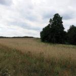 1608_teupitz-neuendorf_04